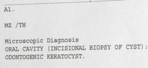 Microscopic Diagnosis Description - 2