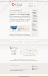 Website Mockup 9